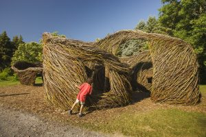 Dougherty's sculptures : odes to nature in the Botanical Garden